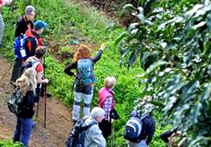 Guided hiking tour in Chinamada