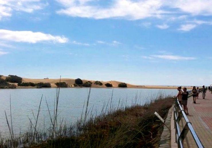 Maspalomas sea lagoon and sand dunes