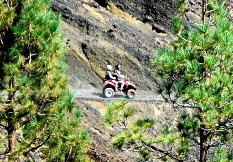 Tenerife quad safari through pine forest