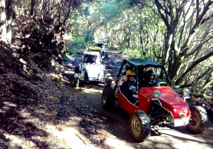 Buggy through the forest of La Palma