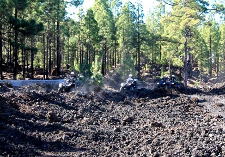 Tenerife forest on quad adventure