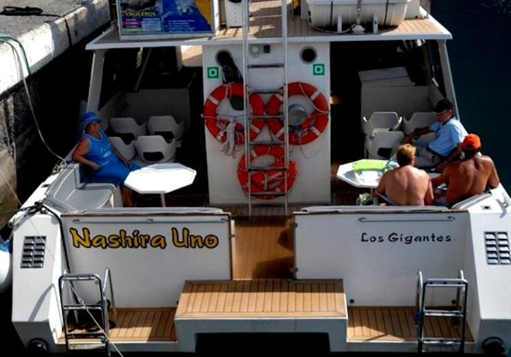Whalewatching boat tour Los Gigantes